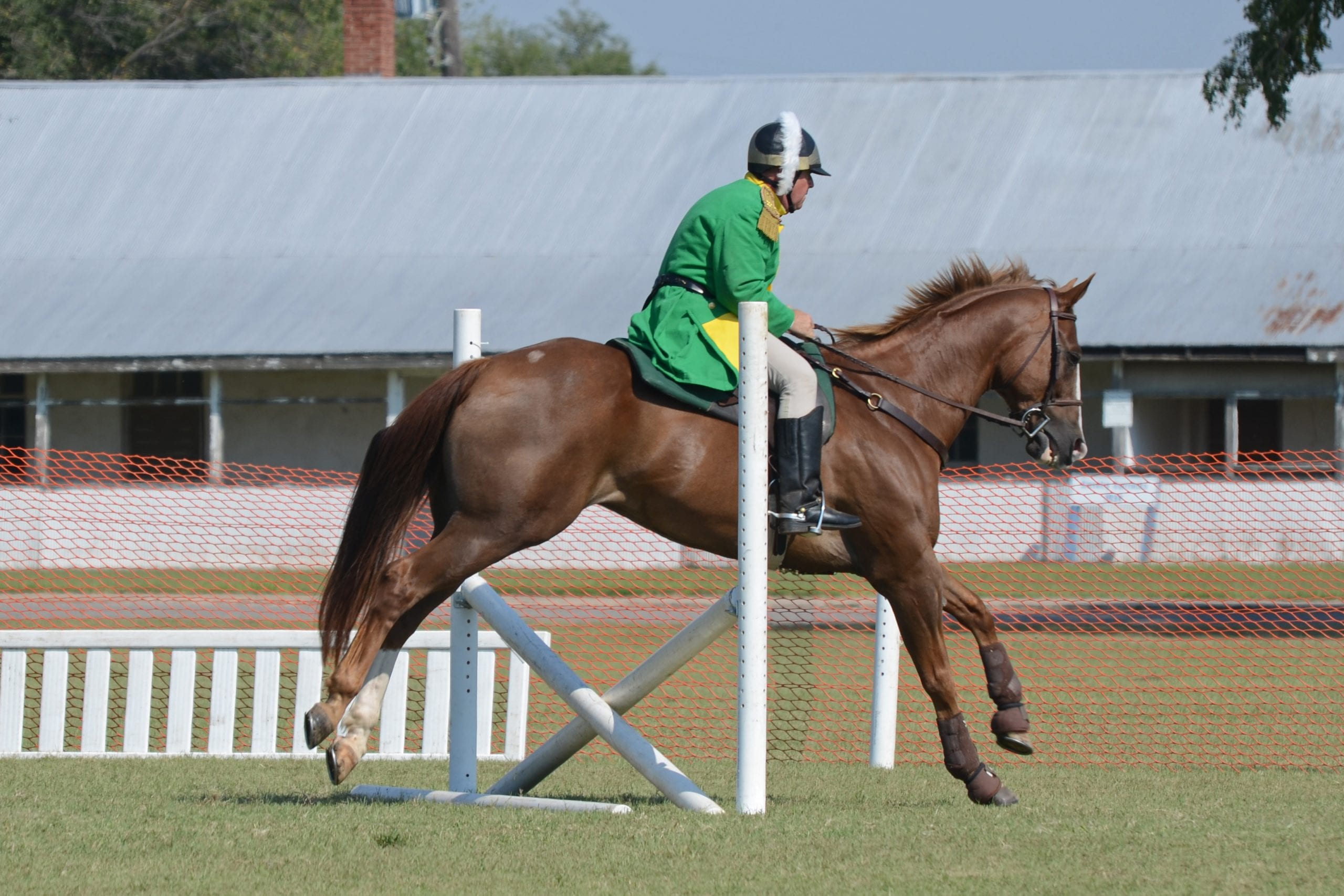 horse and rider going over a hurdle