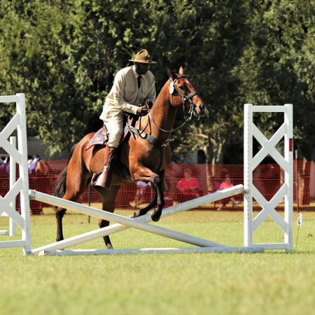 2019 Cavalry Competition